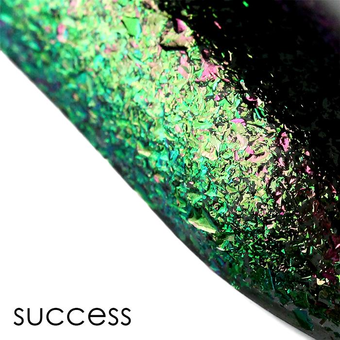 ILNP Success
