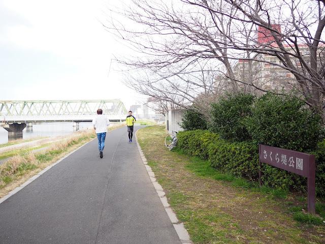 江戸川 市川 さくら堤公園