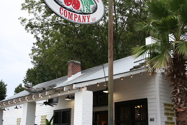 Gator on tin-roof at Carolina Cider Company | The Lowcountry Lady