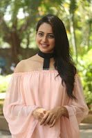 Rakul Preet Singh in lovely Pink Crop Top and Black Trousers at Jaya Janaki Nayaka success meet 047.JPG