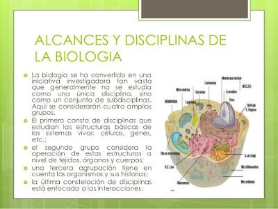 Alcance y disciplinas de la biología