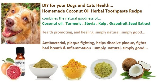 Natural Homemade Toothpaste For Dogs