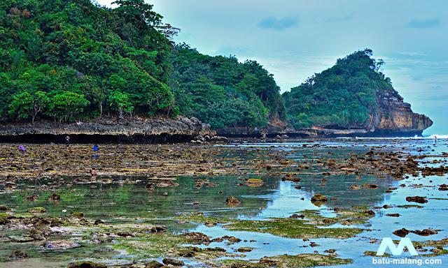 pantai Clungup, salah satu contoh pengelolaan pantai yang bagus di Malang Selatan
