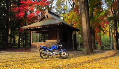 Yamaha YBR 125 blog - Japan