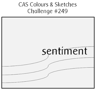 http://cascoloursandsketches.blogspot.co.uk/2017/11/challenge-249-sketch.html