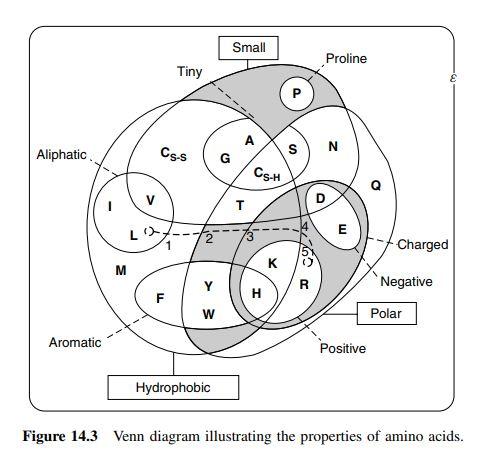 News in Proteomics Research Handy Venn diagram for amino acid