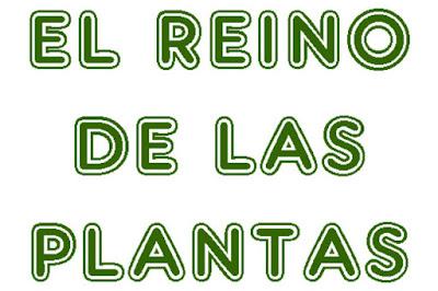 http://cplosangeles.juntaextremadura.net/web/sexto_curso/naturales_6/reino_vegetal_6/reino_vegetal_6.html