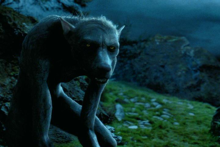 Fluttering Butterflies: Werewolves in film and TV ...