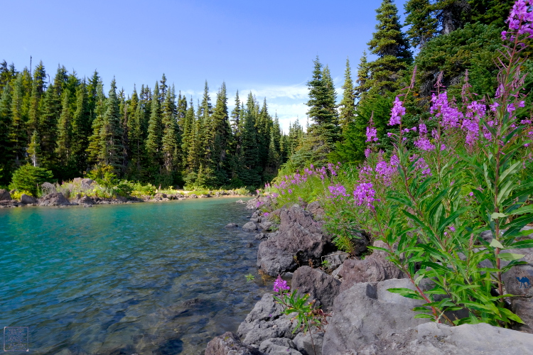 Le Chameau Bleu - Garibaldi Provincial Park - Lac - Canada