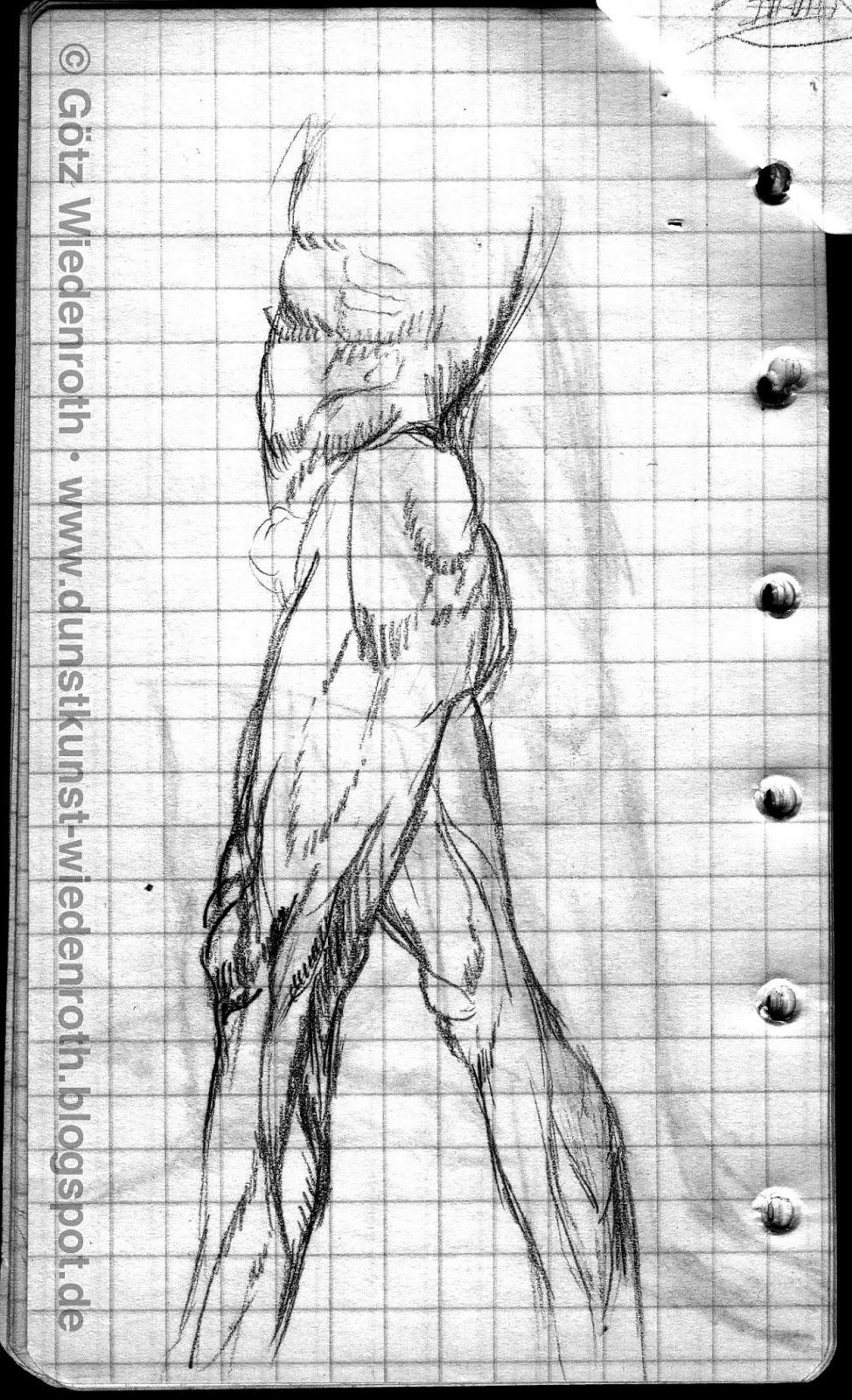Anatomische Skizzen nach Zeichnungen von Leonardo da Vinci.   Dunstkunst
