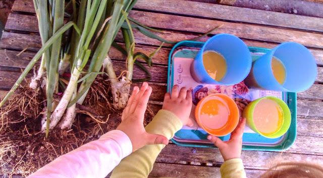 Alimentación Consciente en una Crianza Consciente