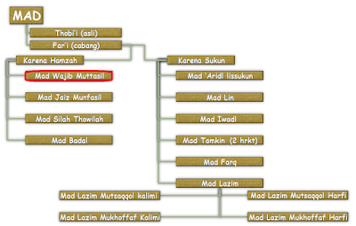 Contoh dan Hukum Bacaan Mad Wajib Muttasil