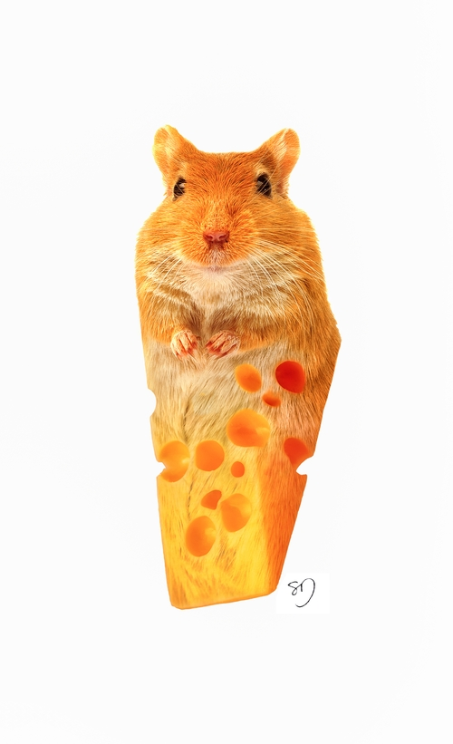 02-Mouse-Cheese-Sarah-DeRemer-You-Are-what-You-Eat-Photo-Manipulation-www-designstack-co
