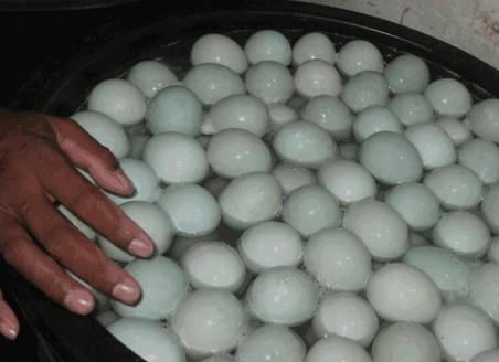 Ciri Ciri Telur Bebek / Itik Yang Layak Dibuat Telur Asin