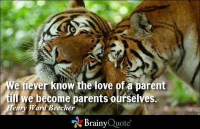 inspirational-quotes-for-my-sweet-parents-786