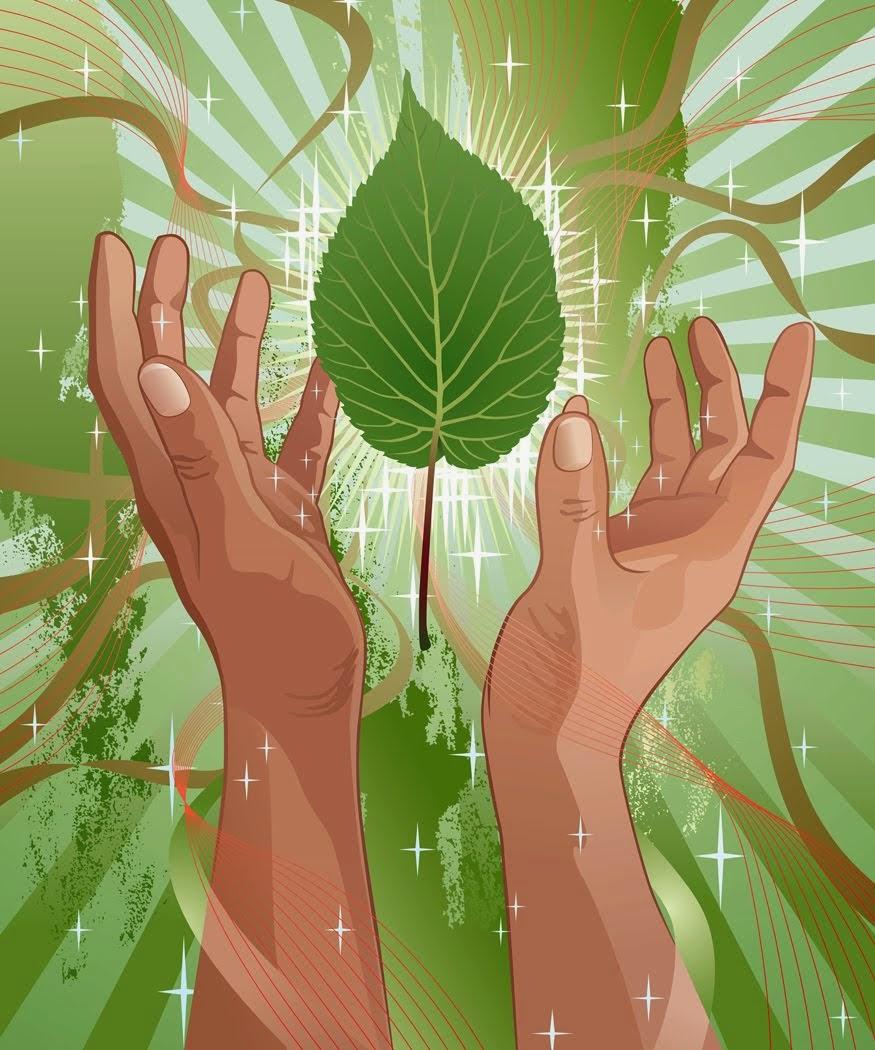 Ecologia e Movimento Ecológico
