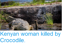 http://sciencythoughts.blogspot.com/2018/08/kenyan-woman-killed-by-crocodile.html