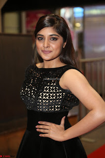 Niveda Thomas Black Sleeveless Cute Dress at 64th Jio Filmfare Awards South 2017 ~  Exclusive 122.JPG