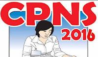 formasi cpns 2016, lowongan bumn 2016, cpns guru 2016, syarat cpns 2016, lowongan asn 2016