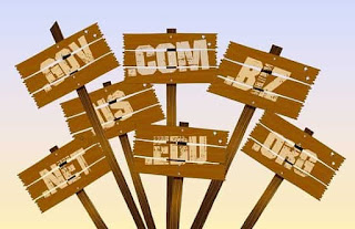 Inilah Mengapa Anda Harus Memakai Domain TLD ( Top Level Domain )