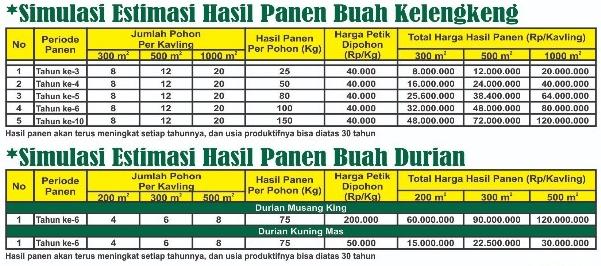 simulasi hasil panen kelengkeng dan durian di kampung Buah Cikalong