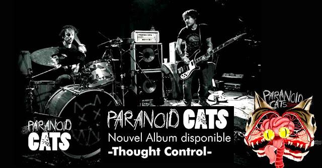 Paranoid Cats