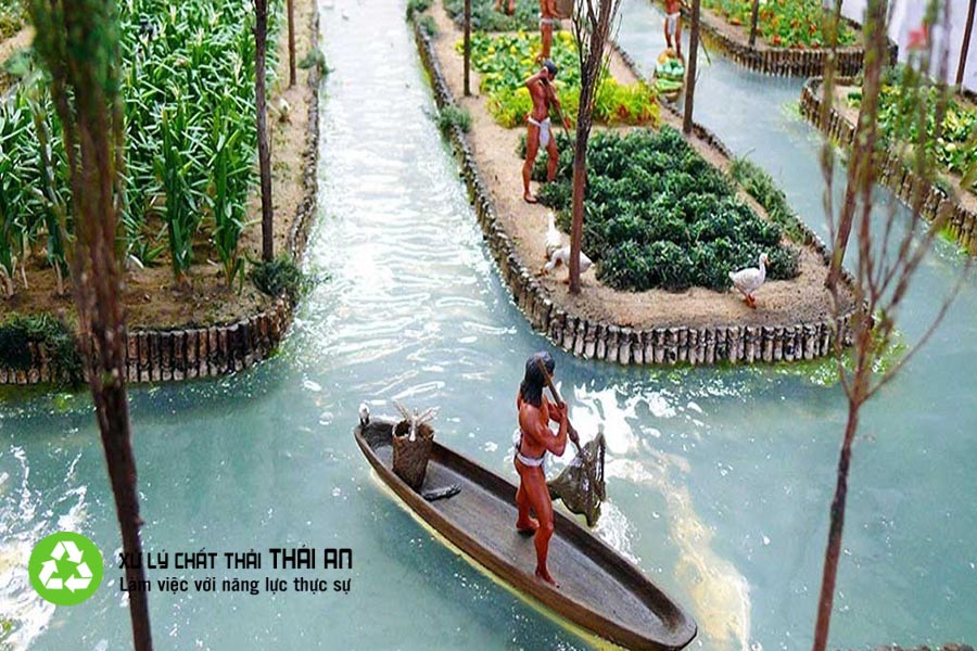 Nước thải nông nghiệp là gì? - Cách xử lý nước thải nông nghiệp