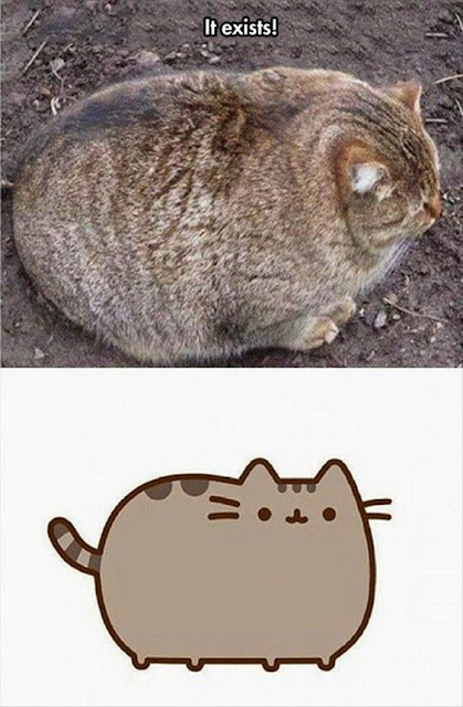 http://www.sometimes-serious.com/2016/04/fat-cat-friday_15.html