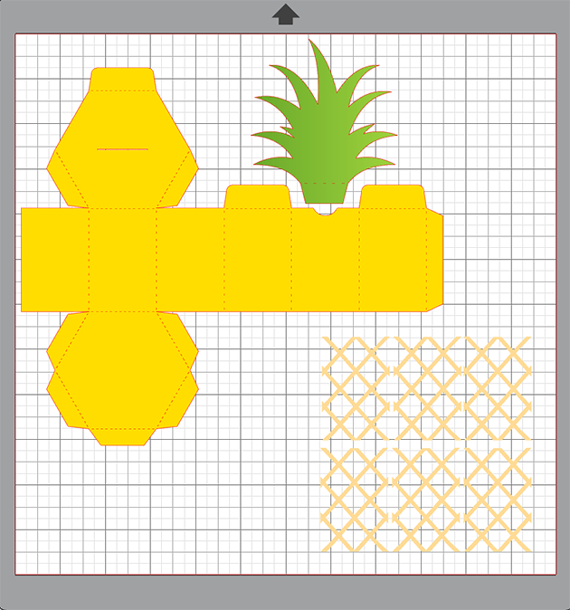 Pineapple Box Tutorial with Brigit