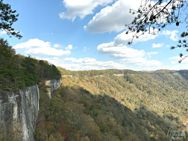 Hugging the rim of the New River Gorge for about 2 miles, the Endless Wall Trail in West Virginia provides hikers with breathtaking vistas by way of its many rocky overlooks and steep cliffs.
