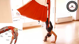 AEROPILATES, PILATES AEREO,  AEROYOGA, aerialyoga, yoga aereo, tutorial, ejercicios, beneficios, air yoga, fly, flying, pilates, yoga columpio, hamaca, trapeze, teacher training, cursos, clases, seminario, webinar
