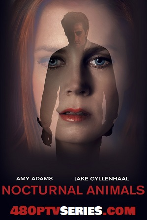 Nocturnal Animals (2016) 999Mb Full Hindi Dual Audio Movie Download 720p BRRip thumbnail