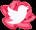 https://twitter.com/leylahana