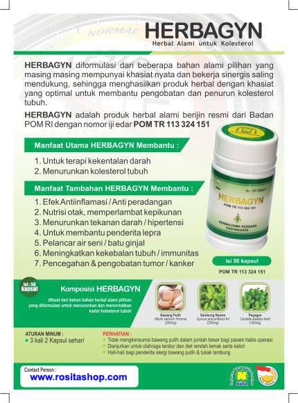 Herbagyn Obat Kolesterol