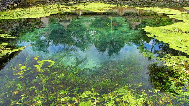 kolam mata air tirta empul