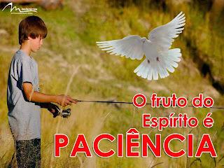 Resultado de imagem para fruto do espirito: paciência