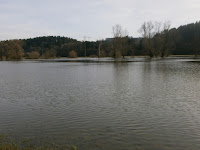 Hochwasser der Donau bei Immendingen