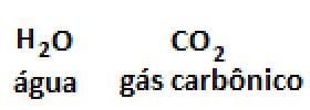 representaçao molecular agua gas carbonico