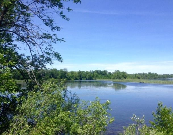 Rideau River near Burritt's Rapids