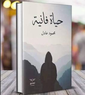طقوس الكاتب محمود عادل في الكتابة