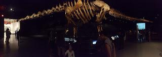 dinosaurio en interior de museo