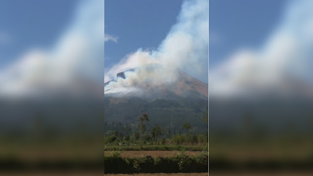 Kebakaran Hutan Terjadi di Gunung Sindoro, Jalur Pendakian Ditutup