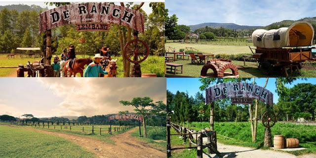 Wisata Berkuda D'Ranch Lembang Bandung Bara