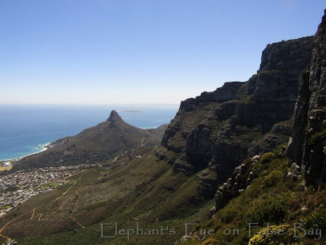 Lion's Head and Camps Bay