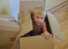 A child in carton.