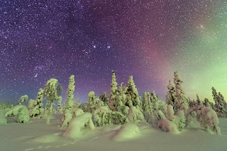 """The northern lights twinkle above snow-covered trees in Sweden's Stubba Nature Reserve, which sits within the 3,630-square-mile Laponian Area UNESCO World Heritage site."" Click to read more on National Geographic"