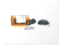 Pillbugs by Art by Ariel.