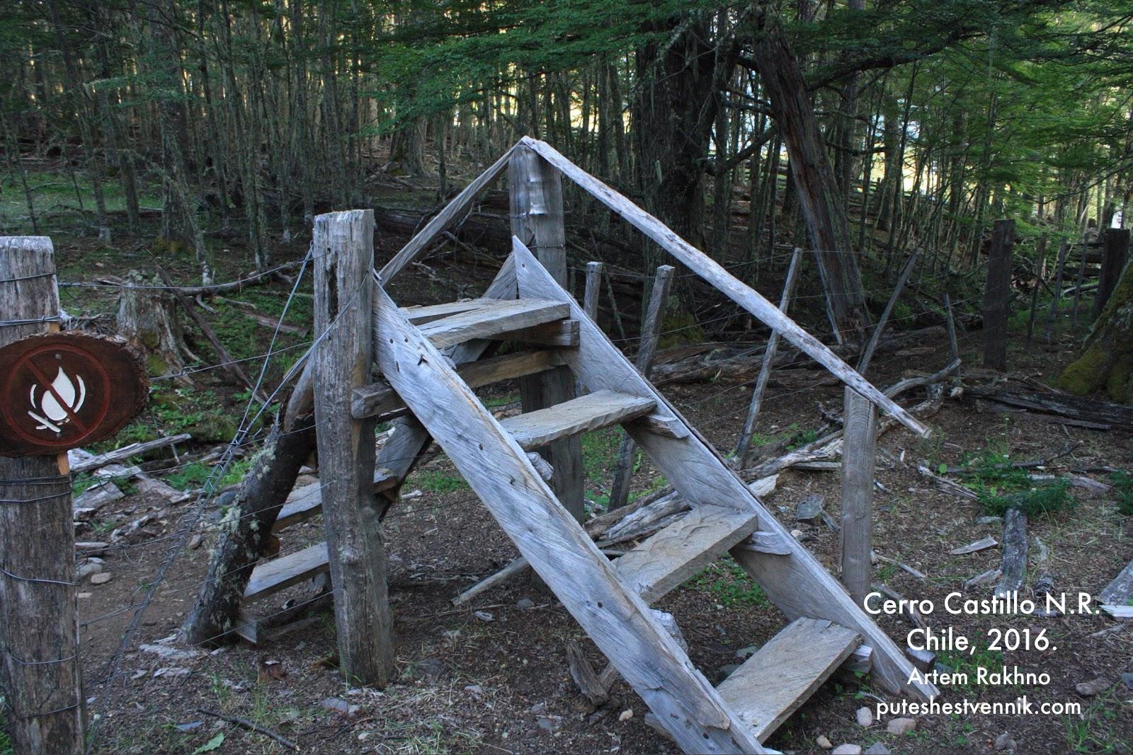 Деревянная лестница через забор в лесу