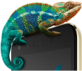 Infinix XOS Chameleon