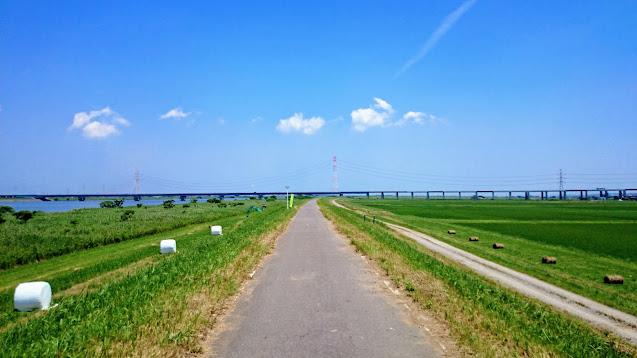 柏から手賀沼を経由して利根川に出て、利根川沿いに銚子まで走るサイクリングコース